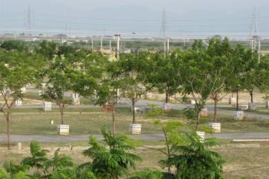 1800 sqft, Plot in Builder Gajalakshmi green City DAMINEDU, Tirupati at Rs. 35.0000 Lacs