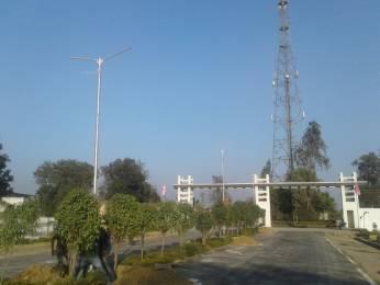 1000 sqft, Plot in Shine Paradise Garden Itaunja, Lucknow at Rs. 2.0000 Lacs