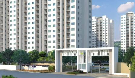 710 sqft, 2 bhk Apartment in TCG The Cliff Garden Hinjewadi, Pune at Rs. 35.7500 Lacs