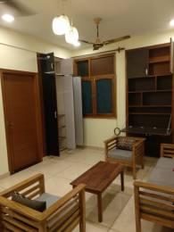 800 sqft, 1 bhk Apartment in Builder Project Safdarjung Enclave, Delhi at Rs. 34000