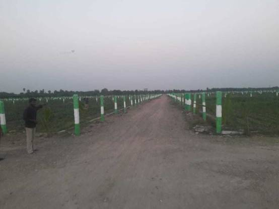 10000 sqft, Plot in Kingmakers Farm Land Chengalpattu, Chennai at Rs. 15.0000 Lacs