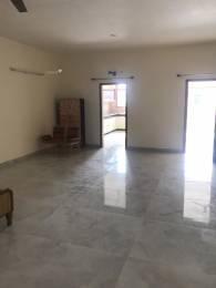 2500 sqft, 3 bhk BuilderFloor in Builder Project Sector 18, Chandigarh at Rs. 35000