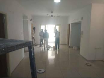 1600 sqft, 3 bhk Apartment in Builder Boulevard ceebross Thoraipakkam OMR, Chennai at Rs. 28000