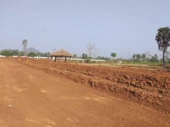 1800 sqft, Plot in Builder nandanavanam Residential Open Plot Atchuthapuram, Visakhapatnam at Rs. 13.5000 Lacs