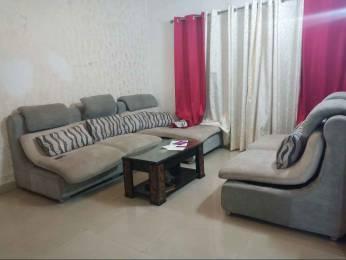 1820 sqft, 3 bhk BuilderFloor in Builder 3BHK House Sector 12 Road, Panchkula at Rs. 30000