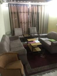 1950 sqft, 3 bhk Apartment in Chinar Chinar Apartments Sector 20, Panchkula at Rs. 15000