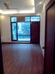 1200 sqft, 2 bhk Apartment in Reputed Imperial Residency Sector 20, Panchkula at Rs. 13000