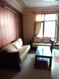 1250 sqft, 2 bhk BuilderFloor in Reputed Shree Shyam Residency Sector 20, Panchkula at Rs. 16500