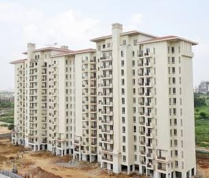 1310 sqft, 3 bhk Apartment in Emaar Emerald Estate Sector 65, Gurgaon at Rs. 1.0000 Cr