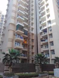 1650 sqft, 3 bhk Apartment in Builder green homes buildcon GREENFIELD COLONY, Faridabad at Rs. 90.0000 Lacs