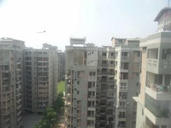 1850 sqft, 2 bhk Apartment in AWHO Sispal Vihar Sector 49, Gurgaon at Rs. 35000