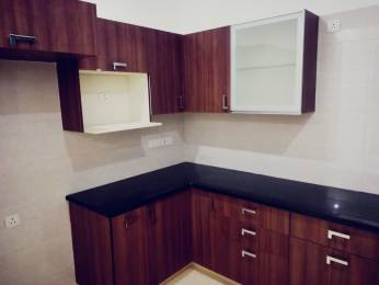 1578 sqft, 3 bhk Apartment in Tulip Violet Sector 69, Gurgaon at Rs. 98.8000 Lacs
