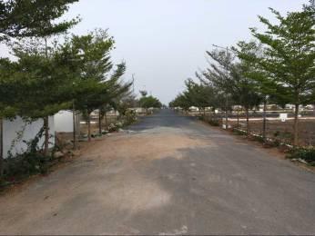 1683 sqft, Plot in Builder Phase 3 Kantharu Kantheru Road, Guntur at Rs. 23.3750 Lacs