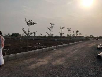 1800 sqft, Plot in Builder Rain tree park near Kantheru Road, Guntur at Rs. 25.0000 Lacs
