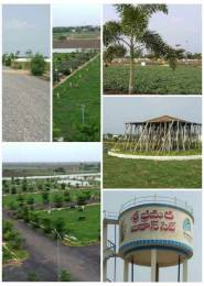 1980 sqft, Plot in Builder Anandavihar Kantheru Road, Guntur at Rs. 28.6000 Lacs
