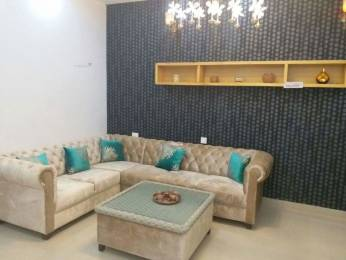 1350 sqft, 3 bhk BuilderFloor in Builder Project Sector 21 Road, Panchkula at Rs. 15000