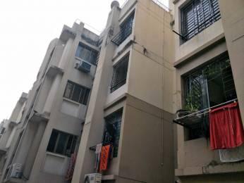1244 sqft, 3 bhk Apartment in Merlin Jasmine Bhawanipur, Kolkata at Rs. 40000