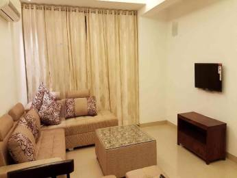 1450 sqft, 3 bhk BuilderFloor in Builder Project DLF Phase 3, Gurgaon at Rs. 31304