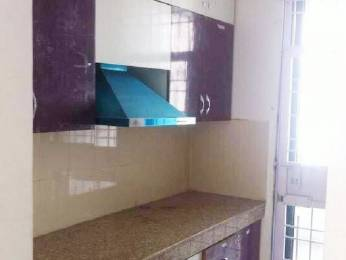 1000 sqft, 3 bhk Apartment in DLF Colony Old Sector 14, Gurgaon at Rs. 32000