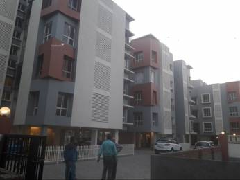 938 sqft, 2 bhk Apartment in Eden Eden Element E M Bypass, Kolkata at Rs. 69.0000 Lacs