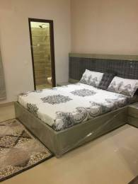 900 sqft, 2 bhk IndependentHouse in Builder trumark homes Sector 124 Mohali, Mohali at Rs. 35.0000 Lacs