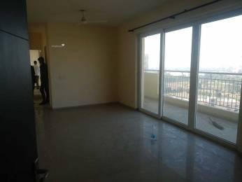 1198 sqft, 2 bhk Apartment in CHD Avenue 71 Sector 71, Gurgaon at Rs. 78.0000 Lacs