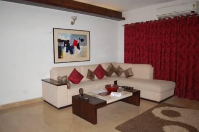 1245 sqft, 2 bhk Apartment in Sidhartha Estella Sector 103, Gurgaon at Rs. 64.0000 Lacs