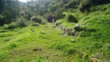 1125 sqft, Plot in Builder Project Dhari Bhatelia Road, Nainital at Rs. 15.0000 Lacs