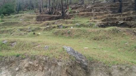 2160 sqft, Plot in Builder Project Jhandi Dhar Binsar Sanctuary Gate Road, Almora at Rs. 6.5000 Lacs