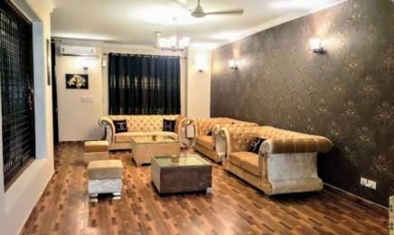 1350 sqft, 3 bhk BuilderFloor in Vipul World Plots Sector 48, Gurgaon at Rs. 45000
