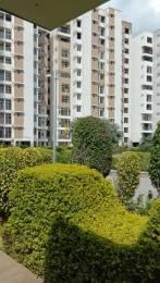 1600 sqft, 2 bhk Apartment in Prem Infracity Aparna Prem Shastripuram, Agra at Rs. 36.9000 Lacs