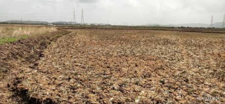 1000 sqft, Plot in Builder ICON REALTY lands plots Uran, Mumbai at Rs. 3.0000 Lacs