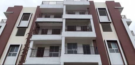 1235 sqft, 3 bhk Apartment in Builder Flat Saguna More, Patna at Rs. 50.0000 Lacs