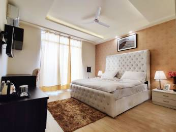 650 sqft, 1 bhk Apartment in JMD Imperial Suites Sector 67, Gurgaon at Rs. 28000