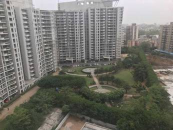 4000 sqft, 4 bhk Apartment in DLF Pinnacle Sector 43, Gurgaon at Rs. 1.3500 Lacs