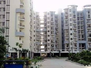 1219 sqft, 2 bhk Apartment in Omaxe Heights Sector 86, Faridabad at Rs. 46.0000 Lacs