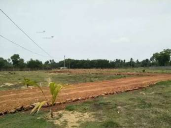 20000 sqft, Plot in Builder Project Panikoili Ragadi Road, Jajpur at Rs. 40.0000 Lacs