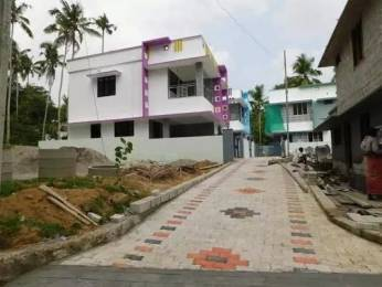 1601 sqft, 3 bhk IndependentHouse in Builder Project Enikkara, Trivandrum at Rs. 49.0000 Lacs