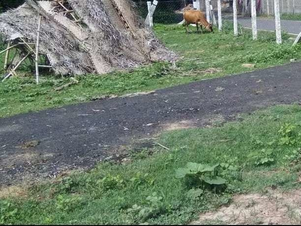 1600 sqft, Plot in Builder Ganapathi nagar Darasuram to Patteeswaram Road, Thanjavur at Rs. 10.4000 Lacs