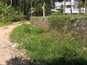 4355 sqft, Plot in Builder Plot for sale at Pathanamthitta Changanassery Kaviyoor Road, Pathanamthitta at Rs. 25.0000 Lacs