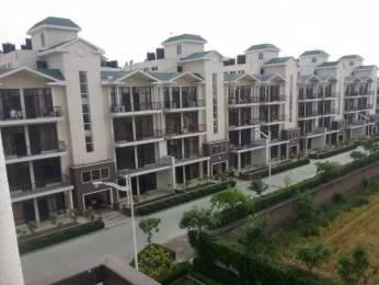 1584 sqft, 3 bhk BuilderFloor in Omaxe Royal Residency Dad Village, Ludhiana at Rs. 75.0000 Lacs