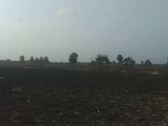 1296 sqft, Plot in Builder Sai Rasika Paradise Kantheru Road, Guntur at Rs. 14.4000 Lacs
