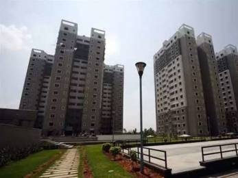1790 sqft, 3 bhk Apartment in Sobha Ruby Platinum Dasarahalli on Tumkur Road, Bangalore at Rs. 1.3000 Cr