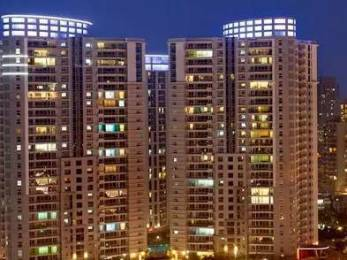3034 sqft, 4 bhk Apartment in DLF The Belaire Sector 54, Gurgaon at Rs. 90000