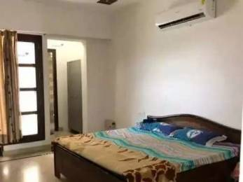 700 sqft, 1 bhk Apartment in Builder Project Brs nagar, Ludhiana at Rs. 5000