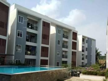 1590 sqft, 3 bhk Apartment in Tulive Viha Anna Nagar, Chennai at Rs. 2.2000 Cr