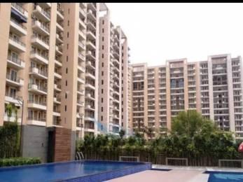 1578 sqft, 3 bhk Apartment in Tulip Violet Sector 69, Gurgaon at Rs. 1.0500 Cr