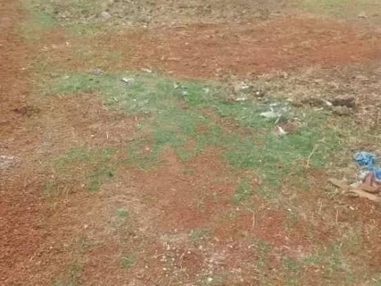 1500 sqft, Plot in Builder Project Kumbakonam, Thanjavur at Rs. 12.7500 Lacs