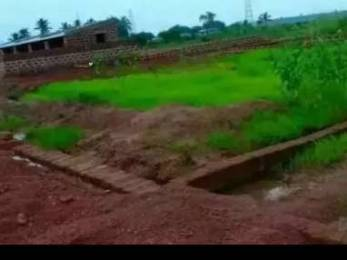 1200 sqft, Plot in Builder Pitapalli Janla, Bhubaneswar at Rs. 6.0000 Lacs