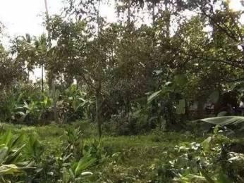 7841 sqft, Plot in Builder Project Kottekkad, Thrissur at Rs. 36.0000 Lacs